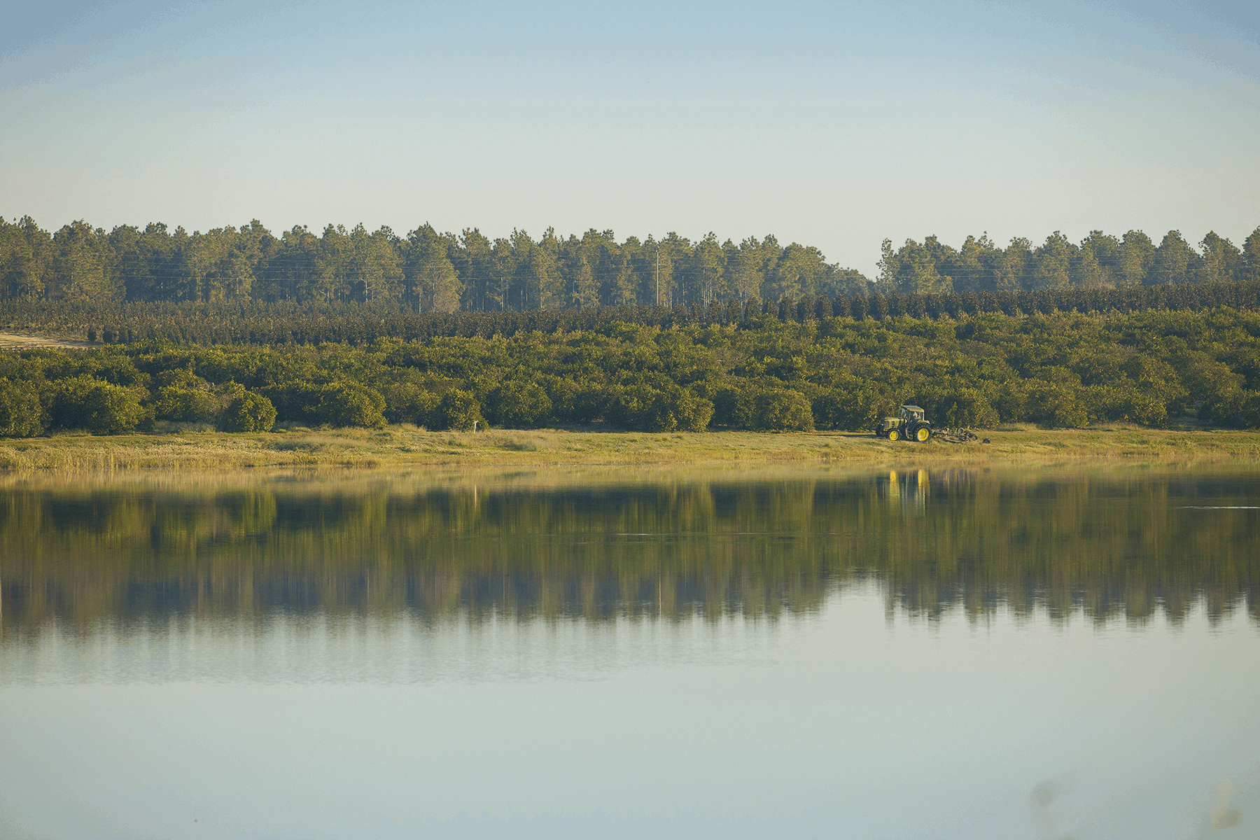 farmraces_cherrylake4